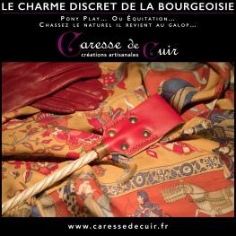 CharmeDiscretDeLaBourgeoisie-cravache_000