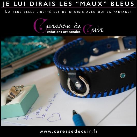 LesMauxBleus_000